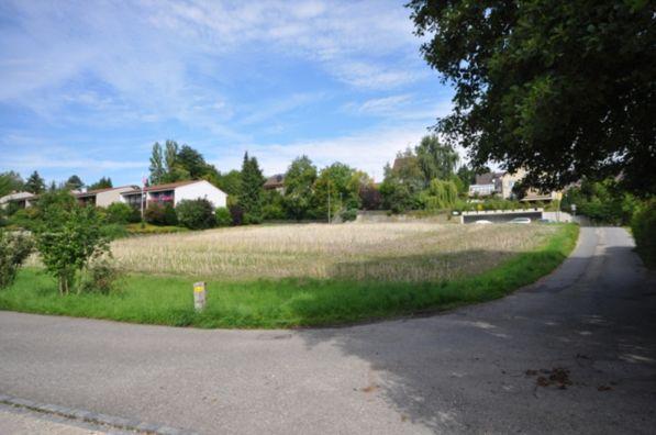 Grundstück Süd-Ansicht